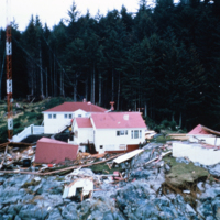 11a. No # Aerial photo of disaster SMALL.jpg