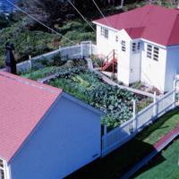 4. 13 Betty Brown cutting grass below tower SMALL.jpg